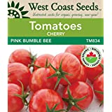 Tomato Seeds - Pink Bumble Bee F1 Certified Organic
