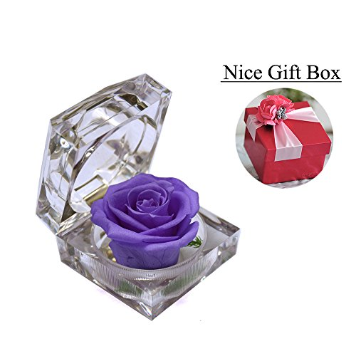Handmade Preserved Fresh Flower Rose with Acrylic Crystal Ring Box – Romantic Small Gift Ideas for Valentine's Day, Anniversary, Birthday (Purple)
