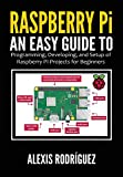 Raspberry Pi: An Easy Guide to