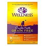Wellness Complete Health Natural Grain Free Dry Pu...