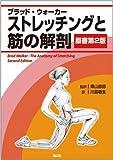 ストレッチングと筋の解剖