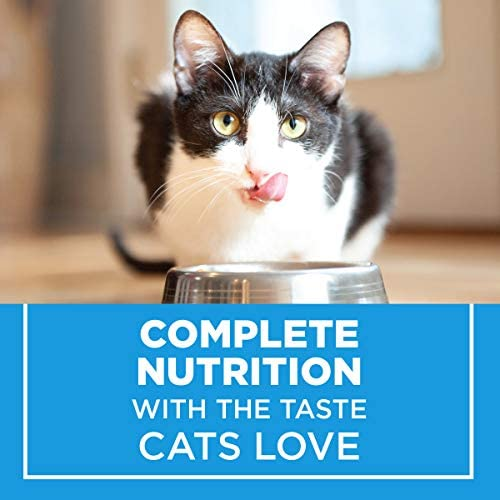 Purina Cat Chow Dry Cat Food, Complete 10