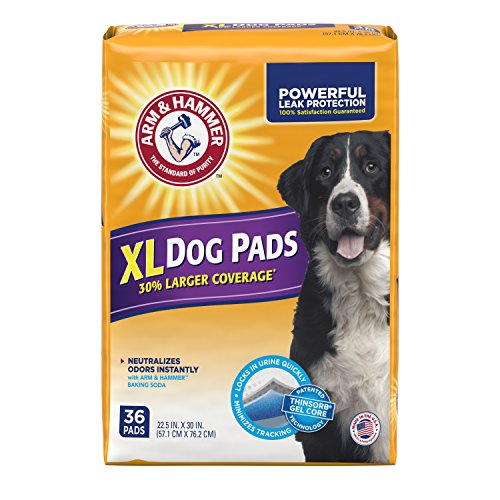 Wee Puppy Training (Arm & Hammer Large Pet Training and Puppy Pads 22.5-inch by 30-inch, 36-Count)