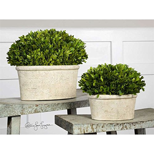 - Uttermost Oval Domes Preserved Boxwood (Set of 2) Flower Pot / Planter .by_homesquarecom it#312191914461136