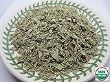 Organic Sage Tea - Salvia officinalis Loose Leaf by Nature Tea (4 oz)