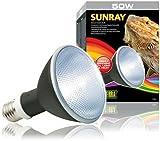 Exo Terra SunRay Metal Halide Lamp 50W for PT2320, 6pk
