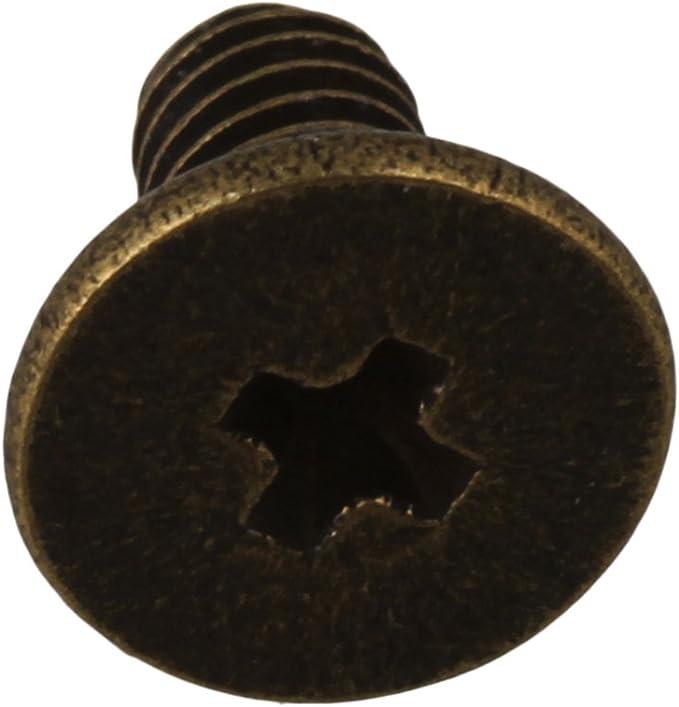 BQLZR Bronzo in lega di zinco con bottoni a vite per rivetti per cinture in pelle per abbigliamento Leathercraft Borse Confezione da 20