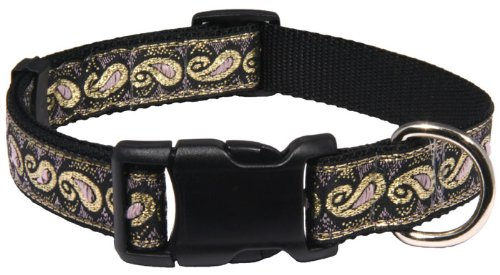 Country Brook Design | Deluxe Gold Trim Paisley Ribbon Dog Collar - Large