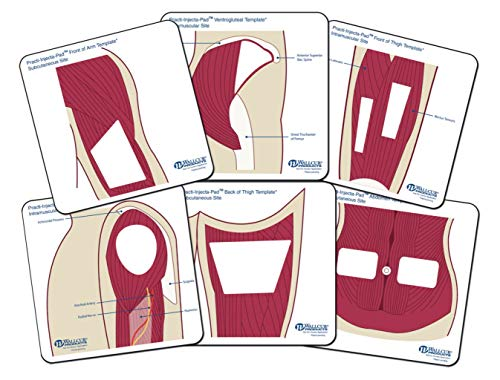 577MT - Description : Anatomical Templates Color, Small - Wallcur PRACTI-Injecta Pad Templates - Pack of 6
