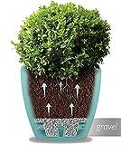 Santino Self Watering Planter DECO 6.7 Inch Lavender Flower Pot