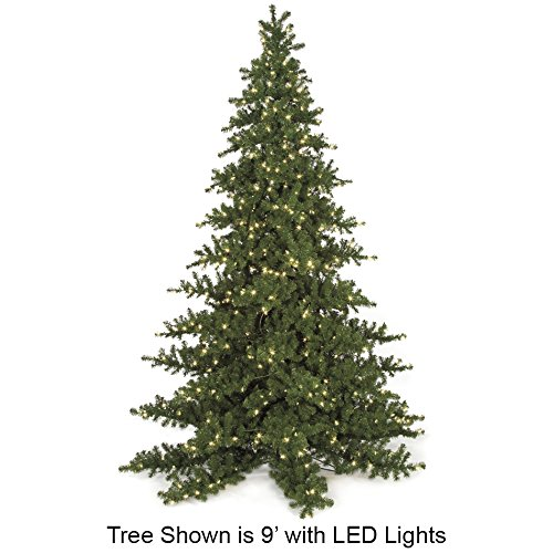 SilksAreForever 6'Hx52 W Nikko Fir LED-Lighted Artificial Christmas Tree w/Stand -Green (Nikko Fir Tree)
