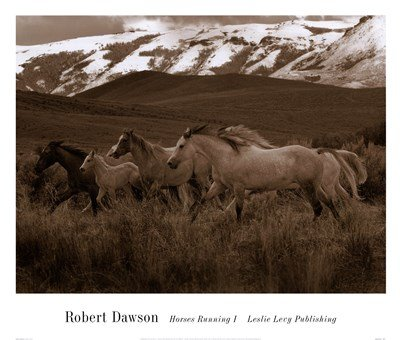 (Horses Running I by Robert Dawson - 26x22 Inches - Art Print Poster)