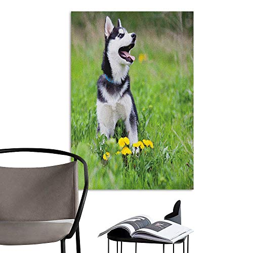 Brandosn Wall Paintings self-Adhesive Alaskan Malamute Little Puppy Playing on Green Grass Spring Meadow Natural Life Outdoors Multicolor Stair Elevator Side W8 x H10 - Natural Coco Frame Stick