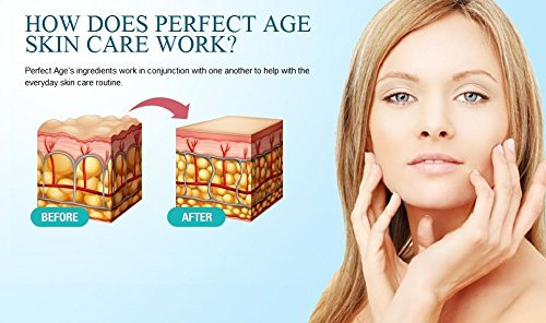 Amazon.com : Perfect Age : Beauty