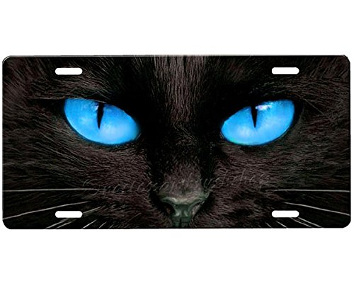 Cat Eyes License Plate Blue Airbrushed License Plates