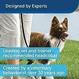 PetSafe Gentle Leader Head Collar with Training