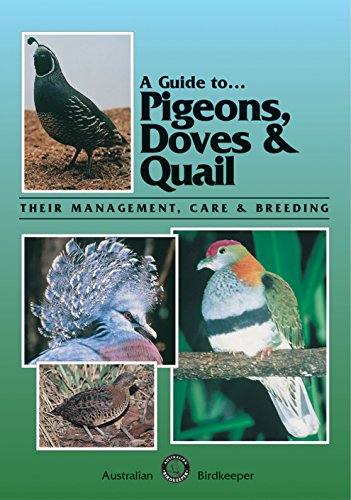 A Guide to Pigeons, Doves & Quail: Their Management, Care and Breeding