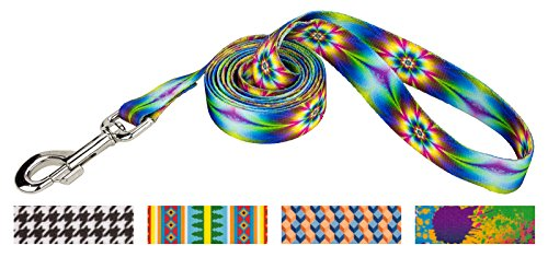 Country Brook Design 1 Inch Tie Dye Flowers Dog Leash - 6 (Hippy Dog)