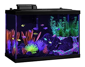 Tetra Glofish aquarium kit 20 gallon