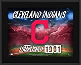"""Cleveland Indians 10.5"""" x 13"""" Sublimated Horizontal Team Logo Plaque - MLB Team Plaques and Collages"""