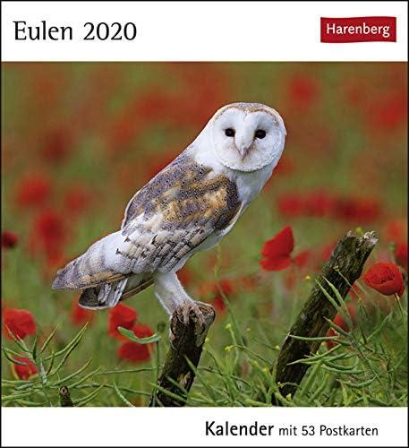 Postkartenkalender Eulen - Kalender 2020 - Harenberg-Verlag - mit 53 heraustrennbaren Postkarten - 16 cm x 17,5 cm