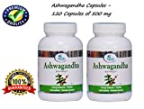Ashwagandha Capsules / Withania Somnifera 500 Mg 60 Vegetarian Capsules - ★ Energy Enhancer - ★ Vitality - ★ Anti Oxidant - ★ Immune Booster - Apollo Pharmacy - Pack of 2