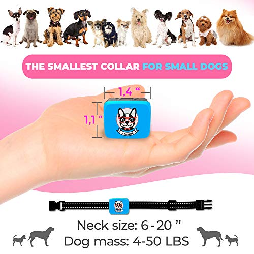 Buy bark collars for small dogs
