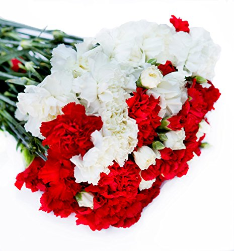 Farm2Door Wholesale Flower Combo Box: 25 White Carnations, 25 Red Carnations, 20 White Mini carnations, 20 Red Mini carnations - Farm Direct Wholesale Fresh Flowers by Farm2Door