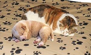 Amazon.com : Cat and Dog Large Fleece Pet Blanket - Throw