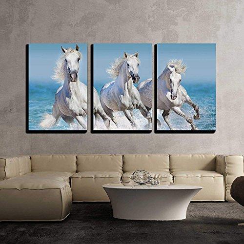 Horse Herd Run Gallop in Waves in The Ocean x3 Panels