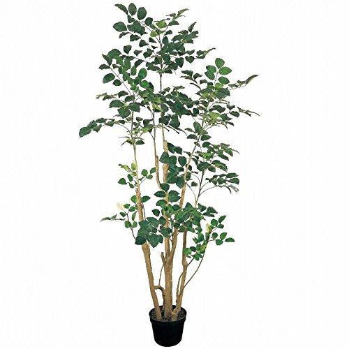 人工観葉植物 ポリシャスポットL 高さ200cm fg88208 B0725YYXG9