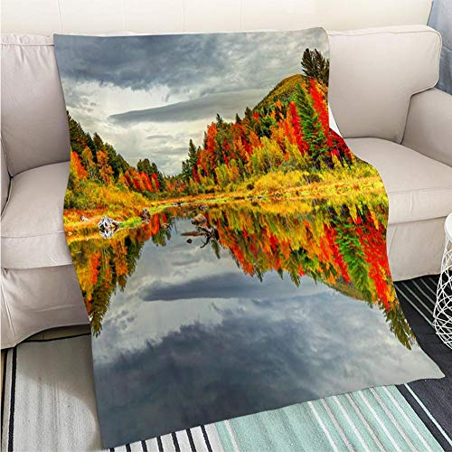 Art Design Photos Cool Quilt Autumn Reflection in The White Mountains of New Hampshire Perfect for Couch Sofa or Bed Cool Quilt