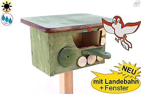 Invierno Pájaros Nido cabaña de protección + Bayern de diseño, mitad cueva con apertura de unos 50 x 80 mm para petirrojo, valla König, mirlo – Cabaña sombra Espacio, Verde Musgo, Nuevo