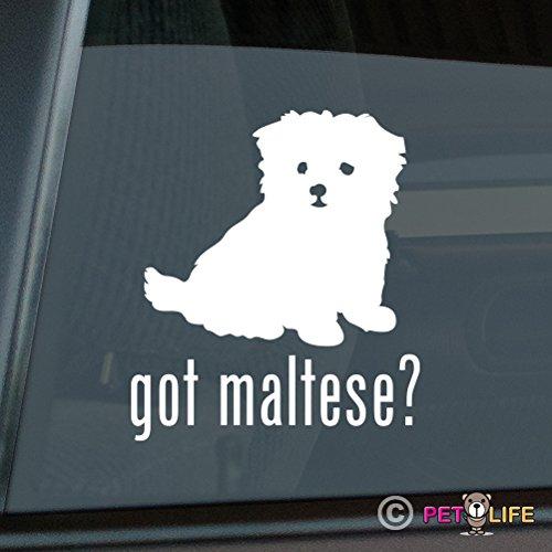 Got Maltese Sticker Vinyl Auto Window Sticker v2 (Got Maltese)
