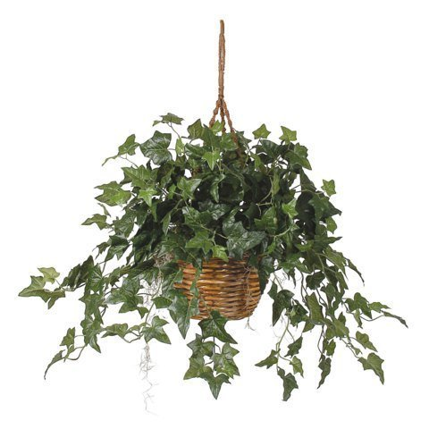 English Ivy Hanging Basket Silk Plant by Nearly Natural
