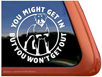 Amazoncom You Might Get In Rottweiler Guard Dog Vinyl Window - Vinyl window decals amazon