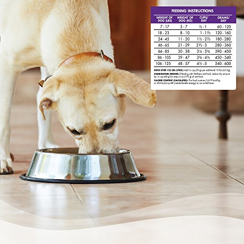 Wellness Complete Health Natural Dry Dog Food Chicken
