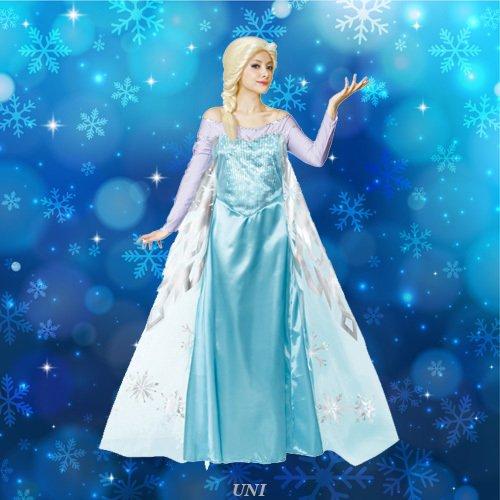 Disney Frozen Costume - Elsa Costume - Teen/Women's STD Size -