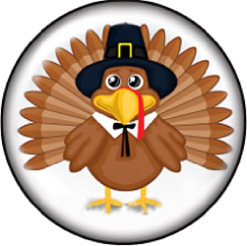 Body Accentz Snap Button Turkey Thanksgiving 18mm Charm Chunk Interchangeable