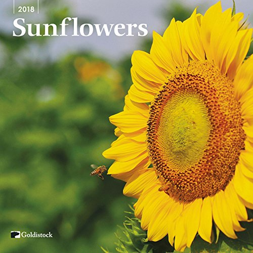 "Goldistock ""Sunflowers"" Eco-friendly 2018 Large Wall Calendar - 12"" x 24"" (Open) - Thick & Sturdy Paper - Will Brighten Your Day"