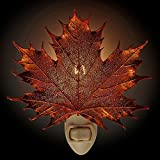 Iridescent Copper Coated Real Sugar Maple Leaf Nightlight -Made in USA