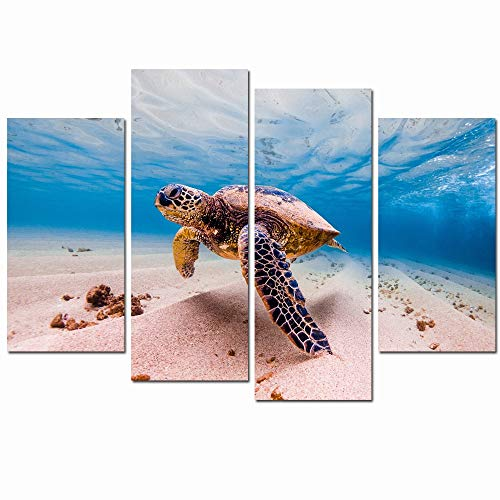 LevvArts - Canvas Prints Wall Art,Green Sea Turtle Cruises in Warm Waters of The Pacific Ocean in Hawaii Picture Modern Home Wall Decor,Stretched Gallery Canvas Wrap Underwater Ocean Giclee Print (Sea Decor Hawaii Turtle)