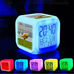 Alarm Clock 7 LED Color Changing Wake Up Bedroom with Data and Temperature Display (Changable Color) Customize the pattern-384.Shitting dog sitting down by Thomas Rousing Photography