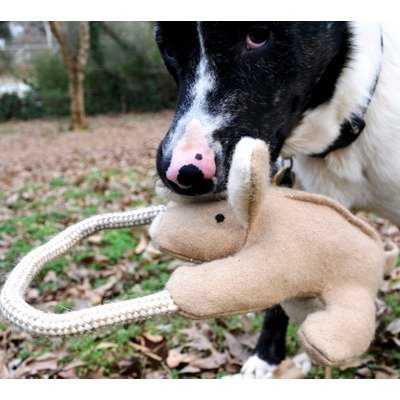 Kangaroo with Rope Dog Toy, My Pet Supplies