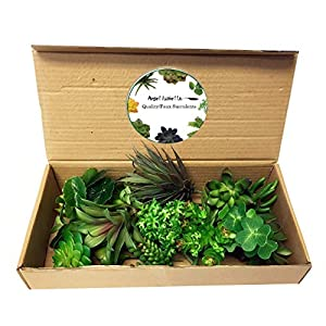 Angel Isabella 20pc Set of Assorted Quality Artificial Succulents Stems DIY Floral Arrangement Accent 77