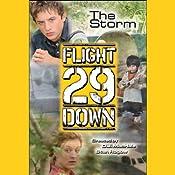 The Storm: Flight 29 Down #4 | Stan Rogow, D. J. MacHale