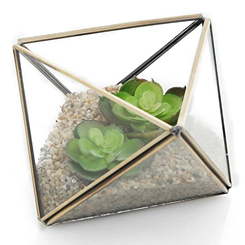 MyGift Diamond Shape Glass Prism Terrarium with Brass Rim/Air Plant Display Case/Tea Light Candle Holder Tealight Holder Case