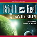 Brightness Reef: The Uplift Trilogy, Book 1 Audiobook by David Brin Narrated by George Wilson