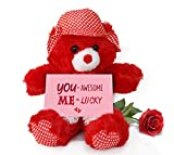 TiedRibbons Valentine Gift for Wife Teddy Bear with Valentine's Special Greeting card and Red Rose