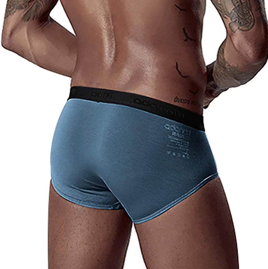 HULKY Mens Underwear Multipack Modal Microfiber Briefs No Fly Covered Waistband Silky Touch Underpants Lightweight Ultra Soft Briefs